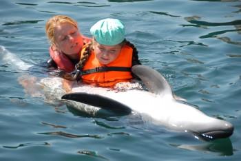 Delfinterapia Központ Marmaris