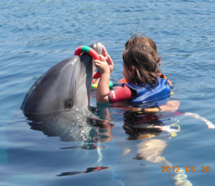 Dolphin Therapy SIpos